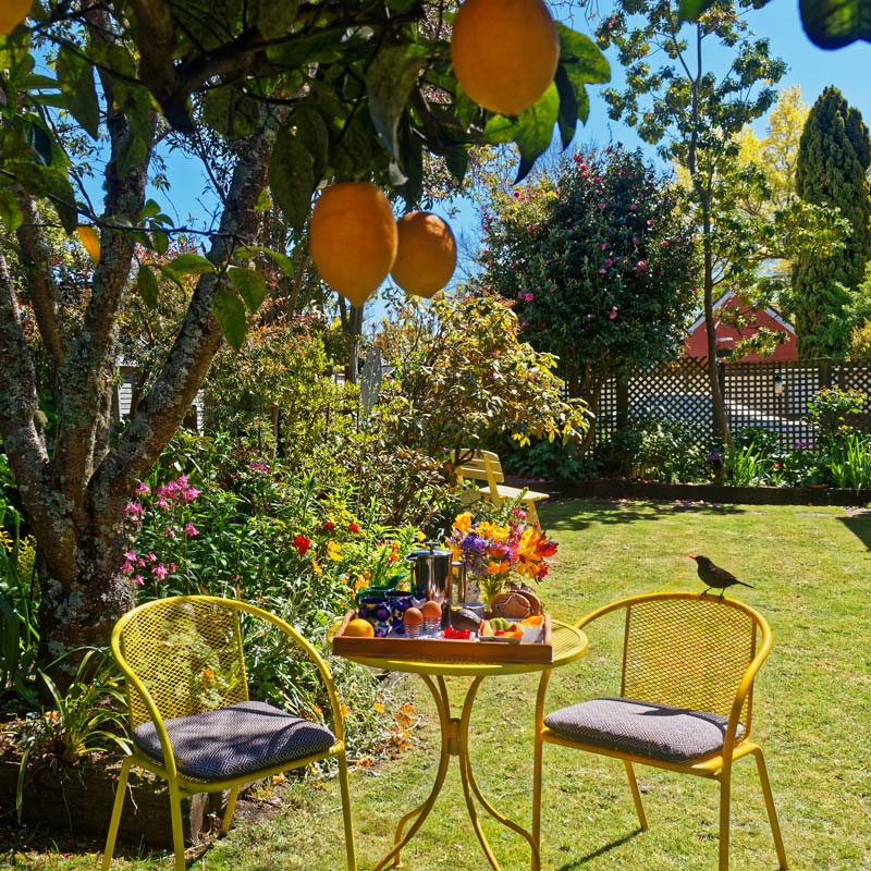 Relax in your Nelson accommodation's lovely garden